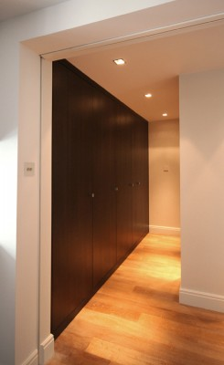 Corridor cabinets with 'Jib' door made from Bog Oak veneers.